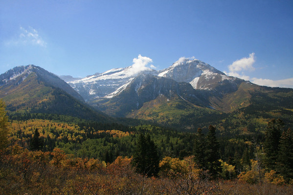 This photo is of the North Aspect of Mt Timpanogos, from the Pinecreek Trail off American Fork / Alpine Senic Loop    (Hwy 92)