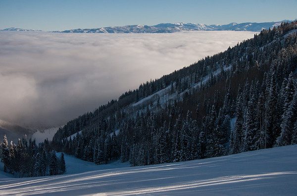 Wouldn't it be ironic if this run was named Inversion?