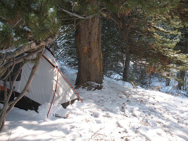 Winter Camping REI cirque tent